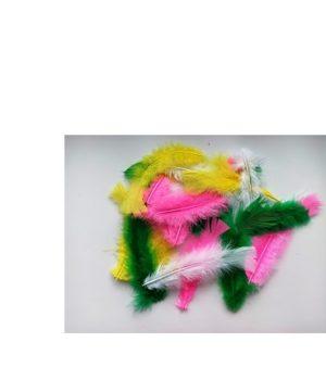 Dekoratyvinės plunksnos